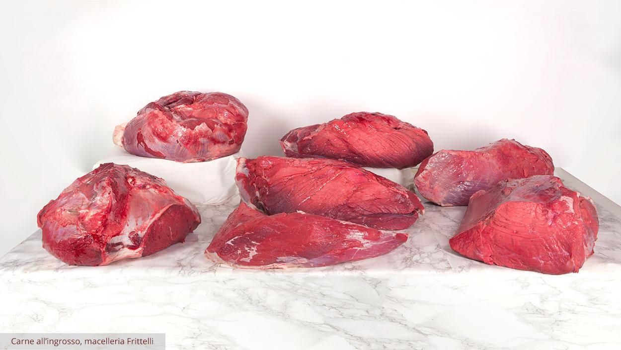 Carne ingrosso